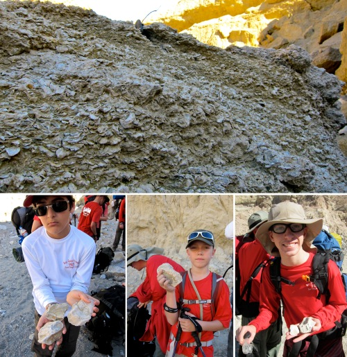 Down in the washes and canyons we began to find our first evidence of fossils.  On the top is a fossilized reef, while boys hold fossil clams and oysters.