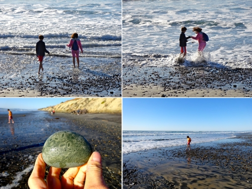 Emma always brings a bag to the beach to collect stones and shells.  We are never disappointed with the discoveries we make.